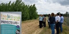 22-M: ENERBIOSCRUB at International Day of Forests in Ponferrada