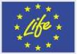 Logo ol Life Projects - Link to Life Projects web page